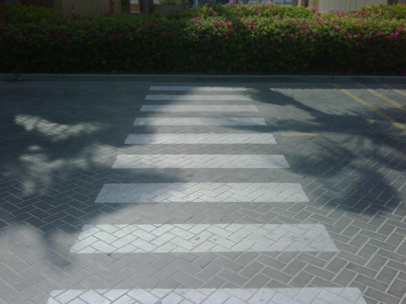 Dubai crossing