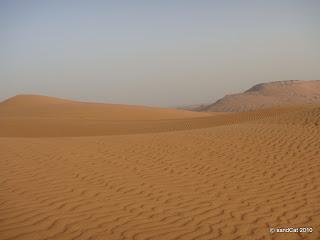 red-desert
